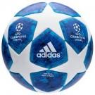 Adidas voetbal Champions L (848)