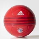 Bayern Munchen voetbal (616).