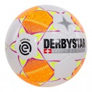 DERBY STAR Eredivisiebal 18/19 (827)